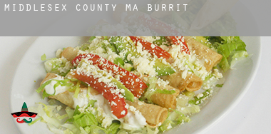 Middlesex County  Burrito